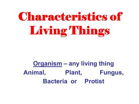Characteristics of Living Things Organism – any living thing Animal, Plant, Fungus, Bacteria or Protist.