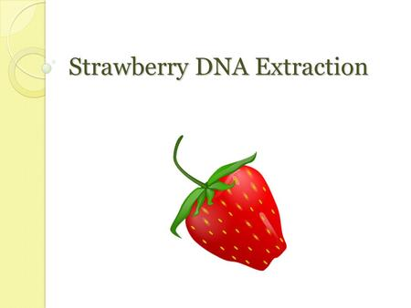 Strawberry DNA Extraction. DNA: Basics Deoxyribonucleic acid Genetic material ◦ Chain of molecules linked together ◦ DNA contains instructions for traits.