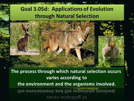 Goal 3.05d: Applications of Evolution through Natural Selection
