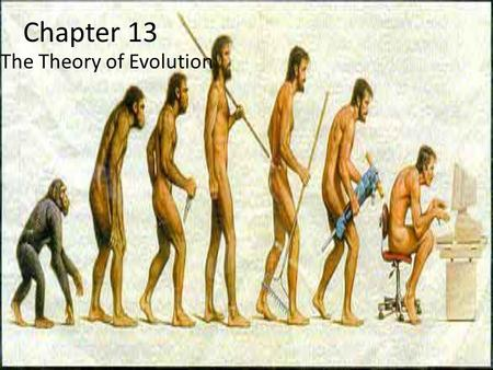 Chapter 13 The Theory of Evolution. THE THEORY OF EVOLUTION BY NATURAL SELECTION Section 13.1.