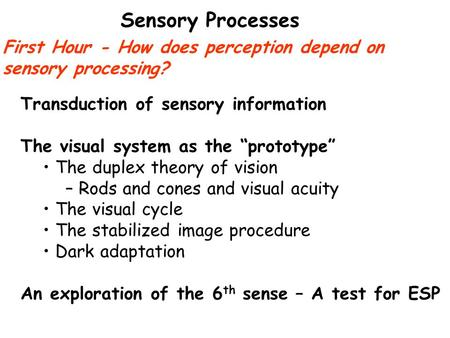 sensation and perception article review