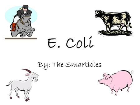 E. Coli By: The Smarticles. What is E. Coli? E. Coli is a bacteria found in the large intestine of mammals. E. Coli can come out through the meat,milk,and.