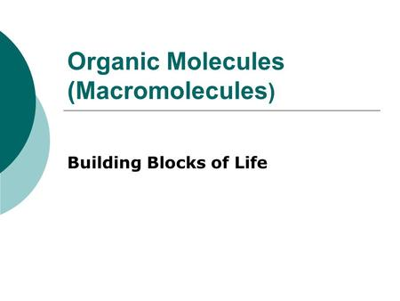 Organic Molecules (Macromolecules ) Building Blocks of Life.