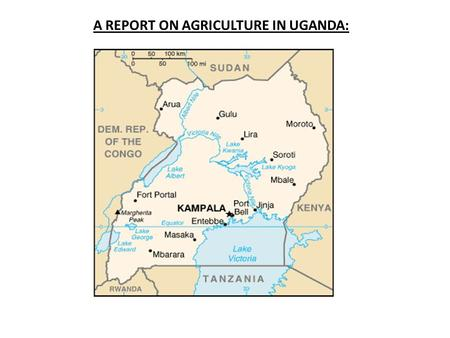 A REPORT ON AGRICULTURE IN UGANDA:. COUNTRY PROFILE: Uganda is located in the eastern region of Africa. It is bordered by Sudan in the north, Kenya in.