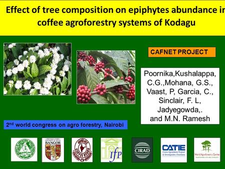Effect of tree composition on epiphytes abundance in coffee agroforestry systems of Kodagu Poornika,Kushalappa, C.G.,Mohana, G.S., Vaast, P, Garcia, C.,