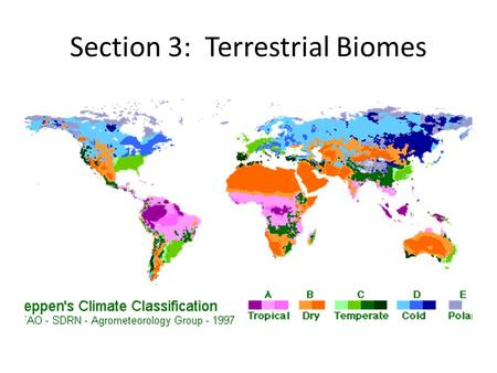 Section 3: Terrestrial Biomes. Biome A land area that is characterized by the plants and animals that live in the area. Two abiotic factors that affect.