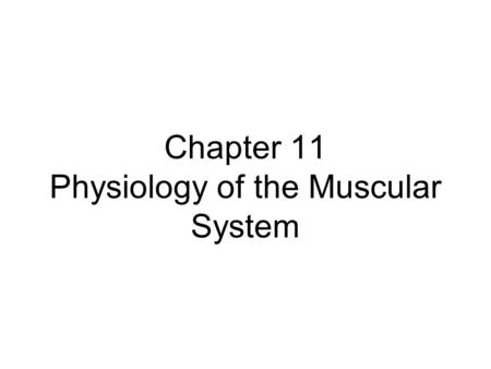 Chapter 11 Physiology of the Muscular System. Introduction Muscular system is responsible for moving the framework of the body In addition to movement,