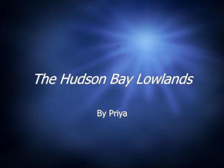 The Hudson Bay Lowlands By Priya Vegetation Hudson Bay and James Bay has long marshes Reed, grasses various kind grow there Northern part of region most.