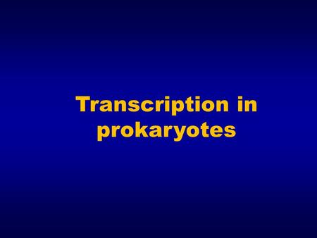 Transcription in prokaryotes. In prokaryotes, only one RNA polymerase is responsible for the synthesis of all RNA ( except for the RNA primers required.