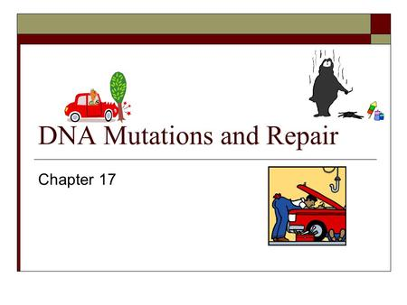 DNA Mutations and Repair Chapter 17. Mutation: is defined as an inherited change in genetic information by cell division or individual organisms. Chernobyl,
