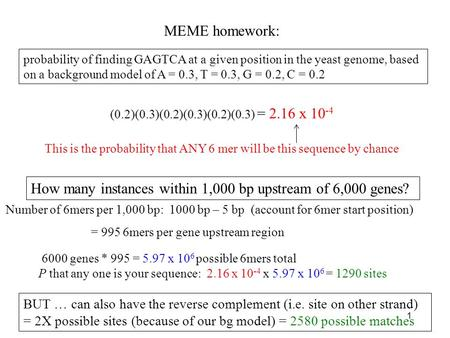 MEME homework: probability of finding GAGTCA at a given position in the yeast genome, based on a background model of A = 0.3, T = 0.3, G = 0.2, C = 0.2.