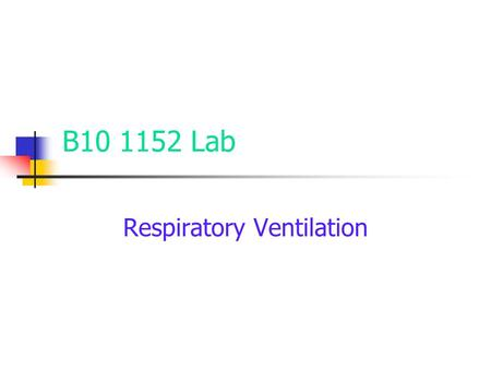 B10 1152 Lab Respiratory Ventilation. Copyright © The McGraw-Hill Companies, Inc. Permission required for reproduction or display. Inspiratory Muscles.