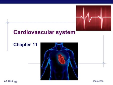 AP Biology Cardiovascular system Chapter 11 2008-2009.