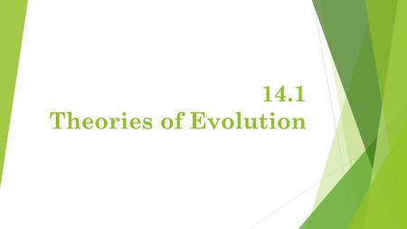 14.1 Theories of Evolution. Early Theory- Lamarck  Lamarck believed that organisms adapted to their environments. His theory was based on 3 incorrect.