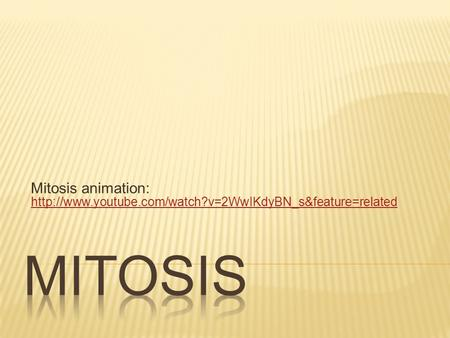 Mitosis animation: