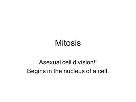 Mitosis Asexual cell division!! Begins in the nucleus of a cell.