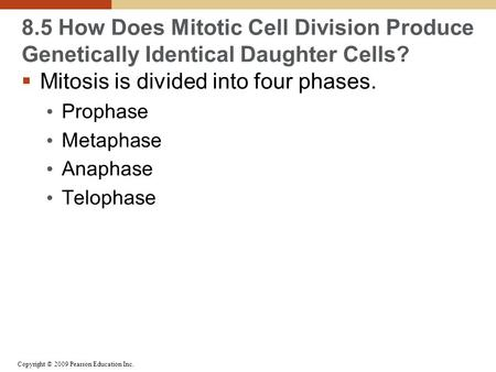 Copyright © 2009 Pearson Education Inc. 8.5 How Does Mitotic Cell Division Produce Genetically Identical Daughter Cells?  Mitosis is divided into four.