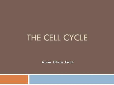 THE CELL CYCLE Azam Ghazi Asadi. introduction ※ T he cell cycle entails of macromolecular events that lead to cell division and the production of two.
