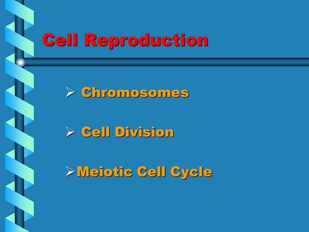 Cell Reproduction  <strong>Chromosomes</strong>  Cell Division  Meiotic Cell Cycle.