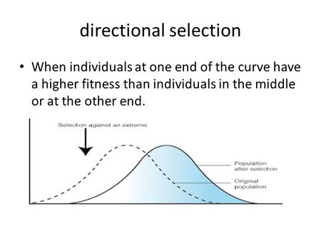 Directional selection When individuals at one end of the curve have a higher fitness than individuals in the middle or at the other end.