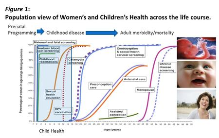 Figure 1: Population view of Women's and Children's Health across the life course. Child Health Prenatal Programming Childhood disease Adult morbidity/mortality.