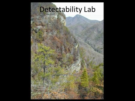 Detectability Lab. Outline I.Brief Discussion of Modeling, Sampling, and Inference II.Review and Discussion of Detection Probability and Point Count Methods.