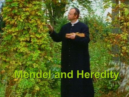Mendeland Heredity Mendel and Heredity I. The Origin of Genetics A.Mendel's Studies of Traits 1. Gregor Johann Mendel-(1822-1884) Austrian Augustinian.