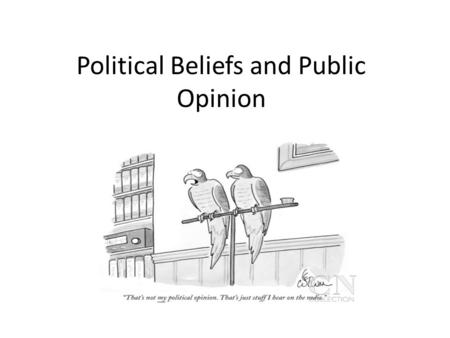Political Beliefs and Public Opinion. Political efficacy The belief that one's political participation really matters.