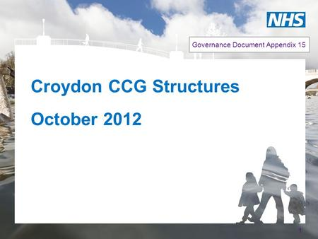 Croydon CCG Structures October 2012 1 Governance Document Appendix 15.