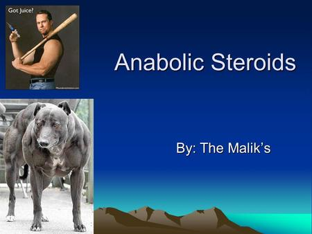 "Anabolic Steroids By: The Malik's. Anabolic Steroids Also known as ""Roids"". Mimics the effects of male hormones testosterone They increase the protein."