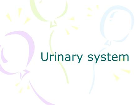 Urinary system. Methods of investigation X-ray Plain abdominal radiographs Urogram –Excretory urography (intravenous pyelography, IVP) –Retrograde urography.