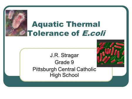 Aquatic Thermal Tolerance of E.coli J.R. Stragar Grade 9 Pittsburgh Central Catholic High School.