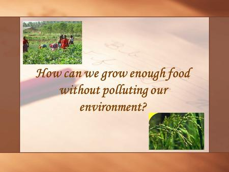 How can we grow enough food without polluting our environment?