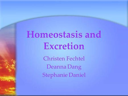 Homeostasis and Excretion Christen Fechtel Deanna Dang Stephanie Daniel.