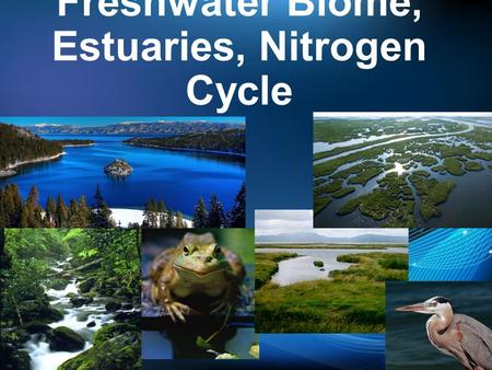 Freshwater Biome, Estuaries, Nitrogen Cycle. Aquatic Biomes Freshwater Marine Estuaries.