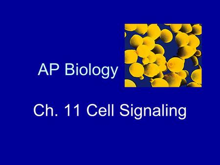 AP Biology Ch. 11 Cell Signaling. Overview of Cell Signaling Cell signaling evolved early in the history of life. Evidence is that signaling in microbes.