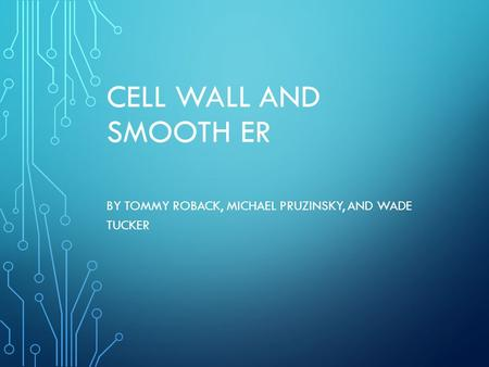 CELL WALL AND SMOOTH ER BY TOMMY ROBACK, MICHAEL PRUZINSKY, AND WADE TUCKER.