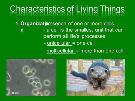 1.Organizatio n -presence of one or more cells - a cell is the smallest unit that can perform all life's processes - unicellular = one cell - multicellular.