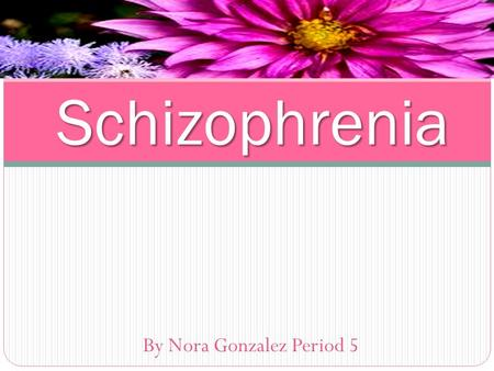 By Nora Gonzalez Period 5 Schizophrenia. Discussion Question: Define Schizophrenia.