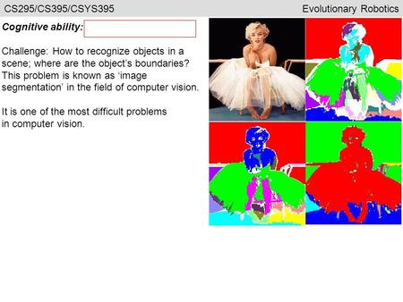 Cognitive ability: Challenge: How to recognize objects in a scene; where are the object's boundaries? This problem is known as 'image segmentation' in.