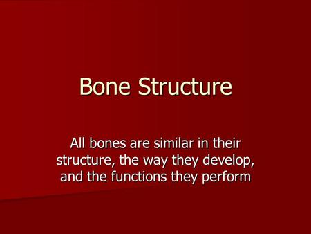 Bone Structure All bones are similar in their structure, the way they develop, and the functions they perform.
