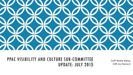 PPAC VISIBILITY AND CULTURE SUB-COMMITTEE UPDATE: JULY 2015 CAPT Rachel Bishop CDR Jay Kennard.