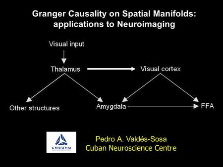 Granger Causality on Spatial Manifolds: applications to Neuroimaging Pedro A. Valdés-Sosa Cuban Neuroscience Centre.