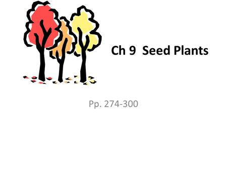 Ch 9 Seed Plants Pp. 274-300. Notes 9-1 All seed plants share 2 characteristics. They have vascular tissue and use seeds to reproduce. They all have body.