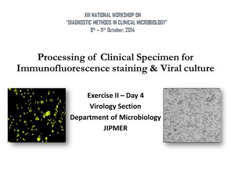 Processing of Clinical Specimen for Immunofluorescence staining & Viral culture Exercise II – Day 4 Virology Section Department of Microbiology JIPMER.