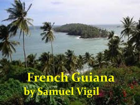 French Guiana by Samuel Vigil. Capital: Cayenne Population:217,000 Flag: Largest City : Cayenne(61550) Official Language: French Size of land: 34,421.