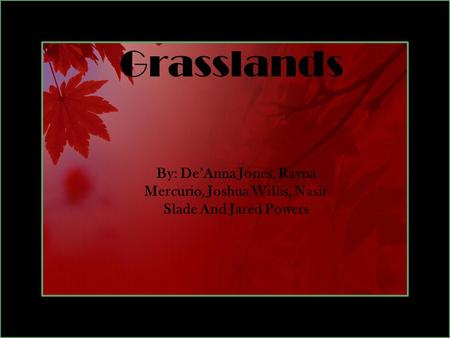 Grasslands By: De'Anna Jones, Rayna Mercurio, Joshua Willis, Nasir Slade And Jared Powers.