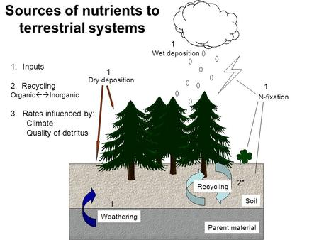 Wet deposition Dry deposition Weathering Recycling Parent material Soil N-fixation Sources of nutrients to terrestrial systems 1.Inputs 2. Recycling Organic.