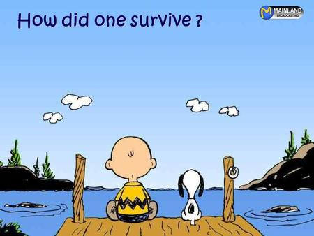How did one survive ? How did one survive growing up in the 70's, 80's and 90's ?