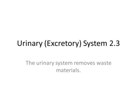 Urinary (Excretory) System 2.3 The urinary system removes waste materials.